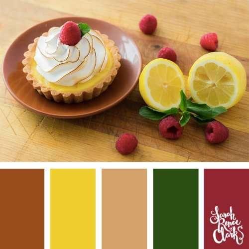 Hiểu cách phối màu cho sản phẩm